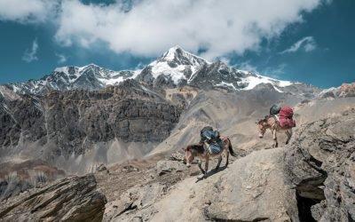 Gravir l'Himalaya contre l'endométriose